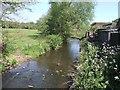 SK0040 : River Tean - upstream at Teanford by John M