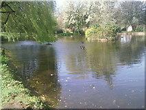 TQ2274 : The grounds of Roehampton University by Marathon