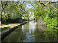 SJ8741 : Canal near Trentham by Mike Todd