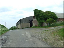 ST9101 : Hill Dairy, Louse Lane, Spetisbury by Lorraine and Keith Bowdler