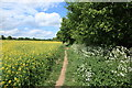 TL5447 : Public footpath from Linton to Hildersham by Rob Noble
