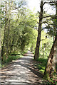 NO1302 : Loch Leven Heritage Trail by Martin Addison