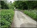 SU9923 : Bridleway sign on Blackhouse Lane by Dave Spicer