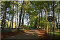 SU7691 : Holloway Lane to Turville by Steve Daniels