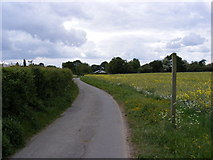 TM2955 : Walnuts Lane & the footpath to Thong Hall Road by Adrian Cable