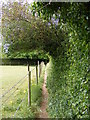 TM3055 : Footpath to Church Terrace by Adrian Cable