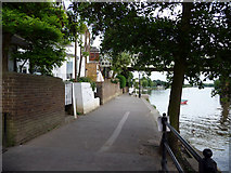 TQ1977 : Towpath, North Bank of the River Thames, Kew by Christine Matthews