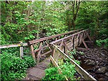 NY9038 : Footbridge over Middlehope Burn by Andrew Curtis