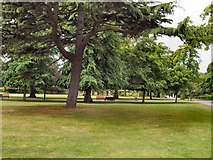 SU4212 : Trees in East Park by Paul Gillett
