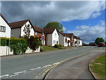 ST5393 : Restway Wall, Garden City Way, Chepstow by Ruth Sharville