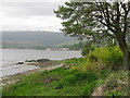 NS0332 : Lamlash Bay from Margnaheglish by M J Richardson