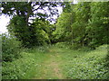 TM2856 : Footpath to Dallinghoo Road by Adrian Cable