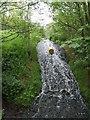 SJ9136 : Mosty Lea Mill - Mill Pool Overflow by John M