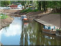 SO9063 : Canalisation of the River Salwarpe by Chris Allen