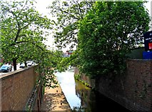 SO8554 : Worcester & Birmingham Canal adjacent to Commandery Road, Worcester by P L Chadwick