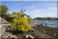 NR7487 : Tayvallich and Loch a' Bhealach by Tom Richardson