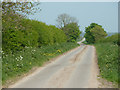 TF1666 : Holmes Lane by Richard Croft