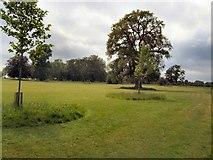 SU9747 : Loseley Park by Paul Gillett