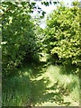 TM3068 : Path at Badingham Pocket Park by Adrian Cable