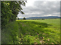SO6786 : Across the fields to Brown Clee by Row17