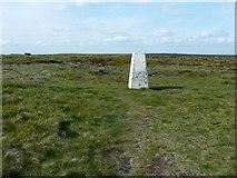 SE0030 : Triangulation pillar on High Brown Knoll by Humphrey Bolton
