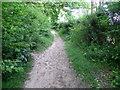 TQ7512 : Footpath near Crowhurst by Maigheach-gheal