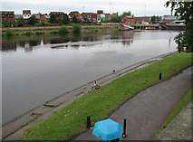 SK5838 : The Trent on a wet afternoon by John Sutton