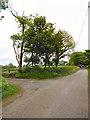 SH4878 : Entrance to Pen-y-fan Bellaf by David Dixon