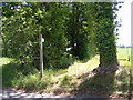 TM3365 : Footpath to Bruisyard Road (C233) by Geographer