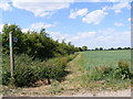 TM2869 : Footpath to Framlingham & Dennington Roads by Adrian Cable
