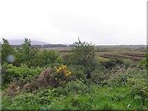 B8322 : Coshclady Townland by Kenneth  Allen
