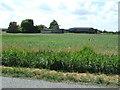 TL3288 : Fields and farm on Benwick Road by Richard Humphrey
