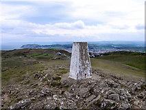 SH7683 : Great Orme Summit by David Dixon