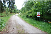 SJ9715 : Sled Dog Training Area by Mick Malpass