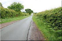 SJ9513 : Mansty Lane Looking Towards Mansty Farm by Mick Malpass