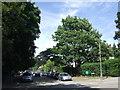 TQ3870 : Westgate Road, Beckenham by Malc McDonald