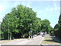 TQ3870 : Foxgrove Road, Beckenham by Malc McDonald