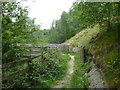 SK4061 : Path in railway cutting approaching footbridge by Andrew Hill