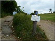 TQ2912 : Golf warning on the South Downs Way National Trail by Shazz
