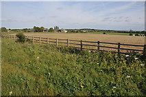 SP3208 : Farmland at Curbridge by Philip Halling