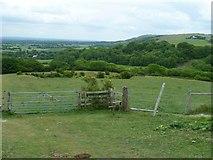 TQ2813 : The way down Wolstonbury Hill by Shazz