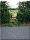 N9731 : Convenient gap by Ian Paterson