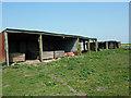 TF1460 : Tin sheds by Richard Croft