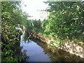 TQ1574 : Duke of Northumberland's River, Twickenham by Marathon