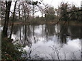 TQ4265 : Lake south of Hollydale Recreation Grounds (6) by Mike Quinn