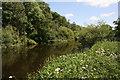 SJ4159 : The River Dee near Aldford by Jeff Buck