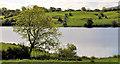 J3049 : Begney Lake near Dromara (3) by Albert Bridge