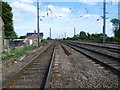 TF1205 : View from Maxey Road Level Crossing, Helpston by Marathon