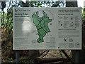 TL7806 : Information Board, Danbury Ridge Nature Trail by Roger Jones