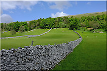 SD9771 : Pasture at Hawswick Head by Rob Burke